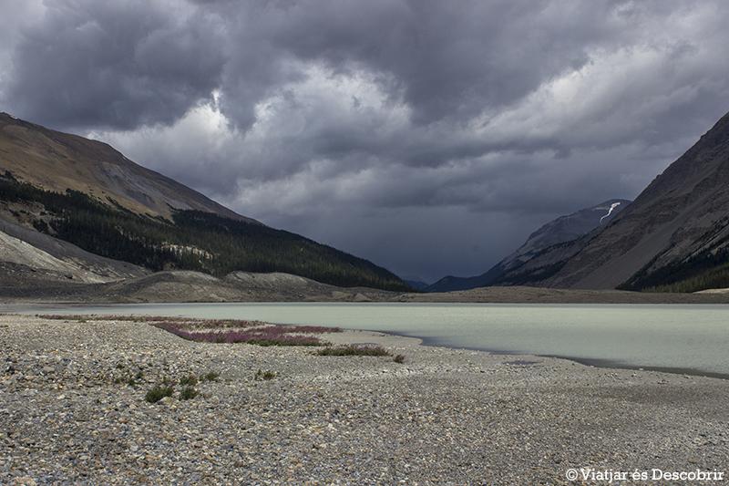 lago Sunwapta.