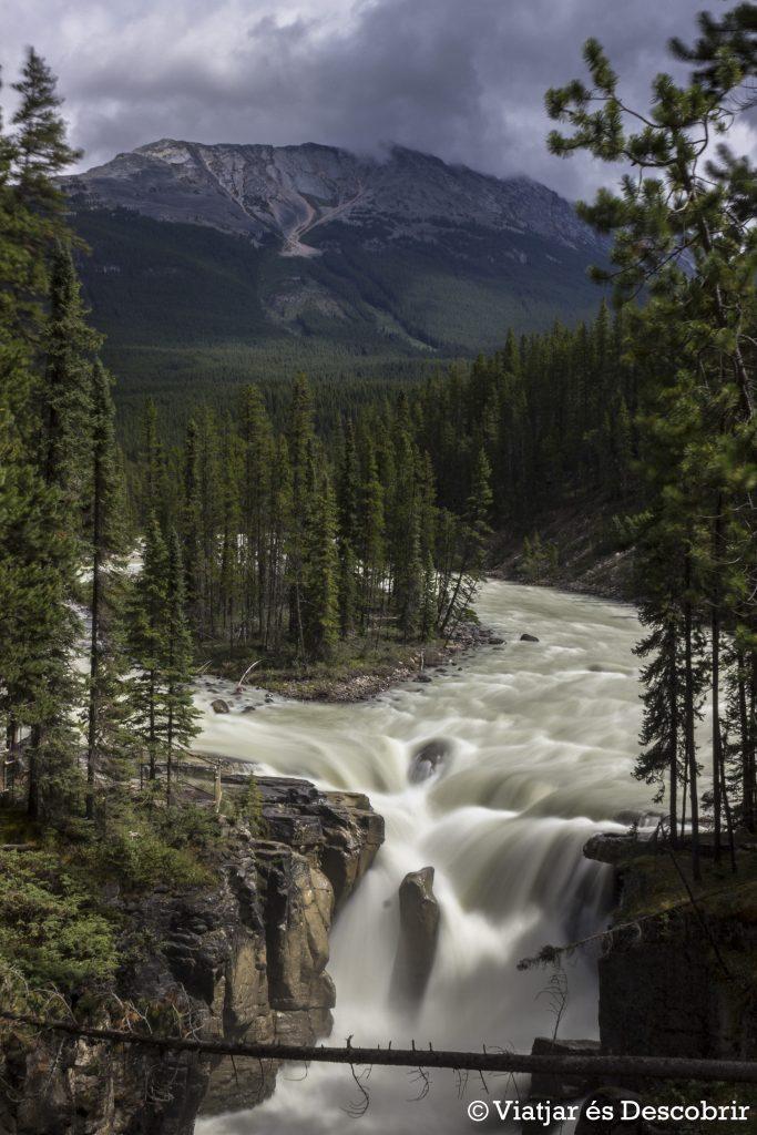 Les Sunwapta falls