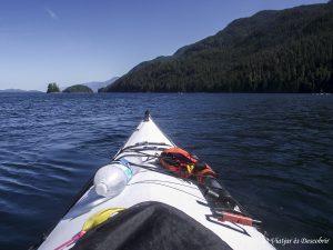 Excursión en Kayak desde Telegraph Cove