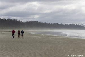El Parque Nacional Pacific Rim: Sus mamíferos marinos y playas