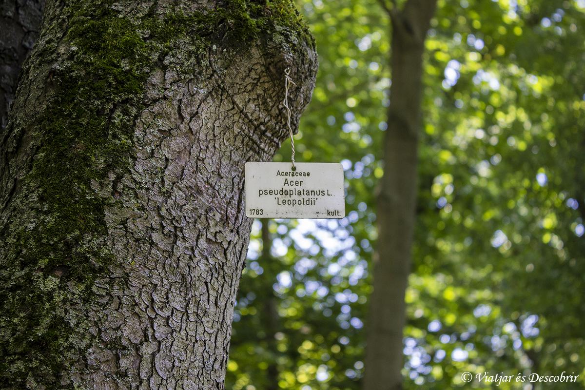 jardín botánico zagreb