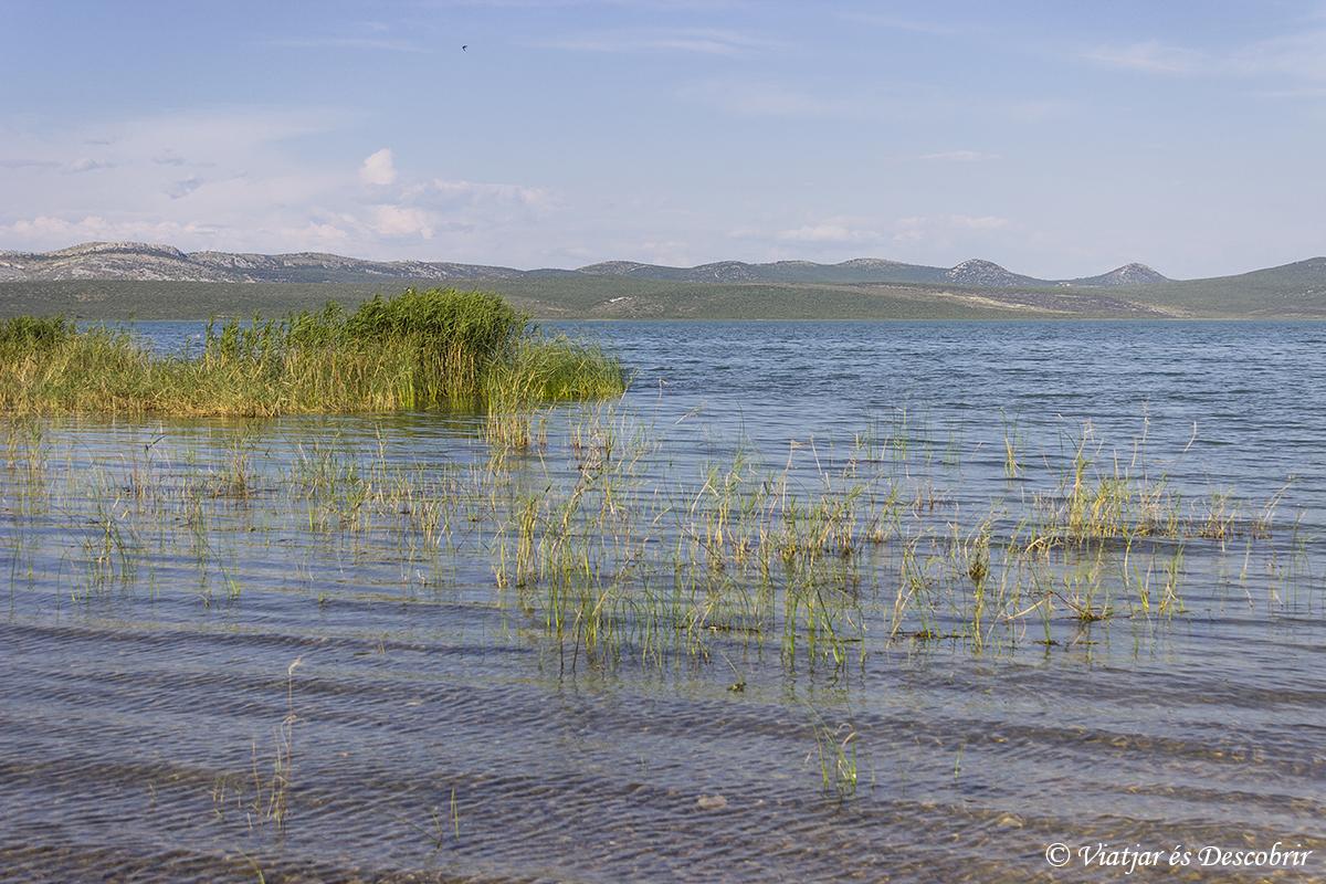 Lagoac de Vrana en Croacia