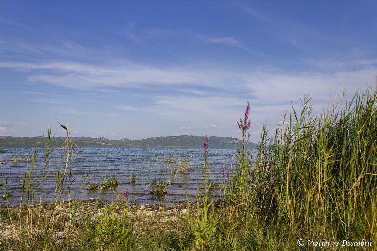 Vransko jezero. Carretera Adriatico en croacia