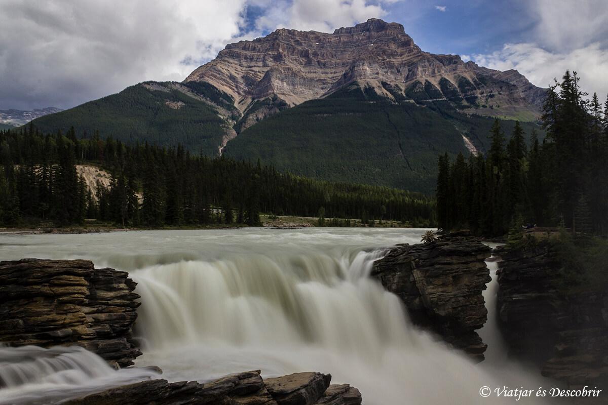 la cascada athabasca en jasper