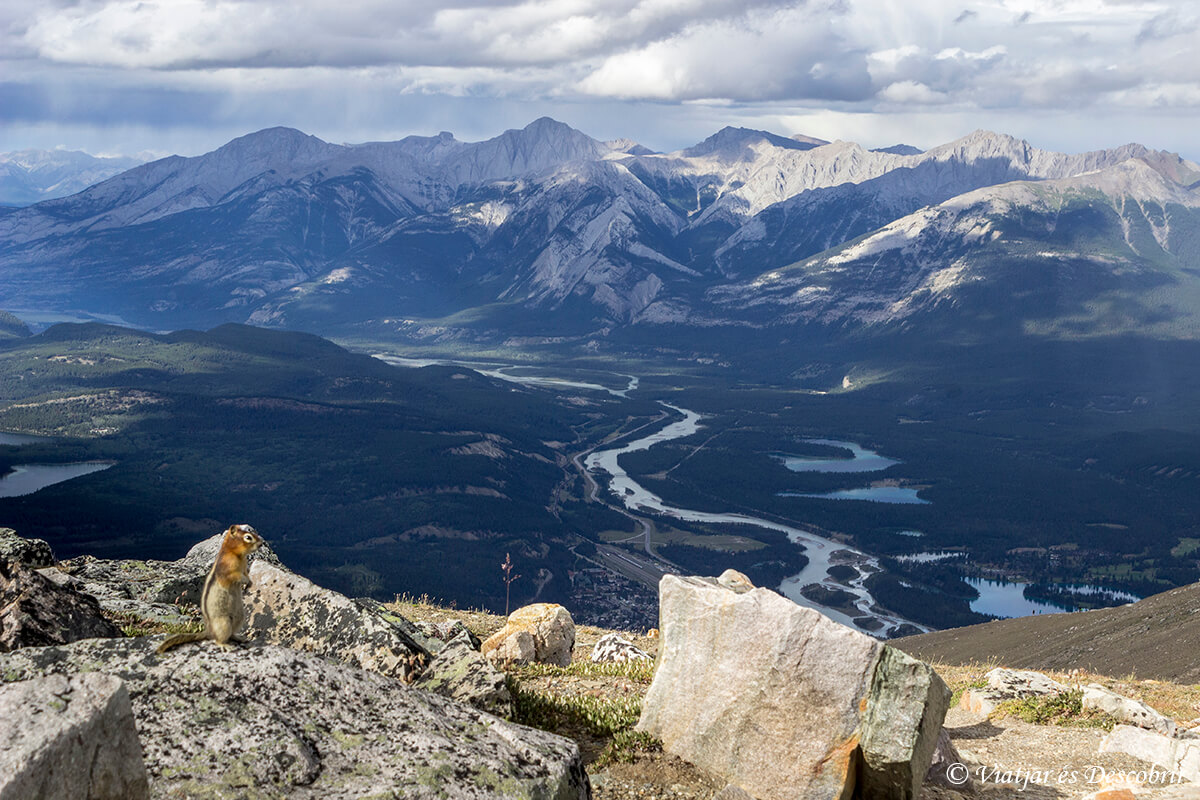 vista panoramica del parque nacional jasper
