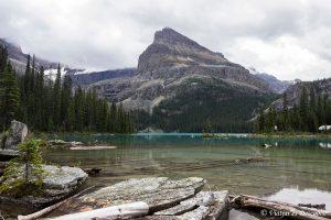 Las Montañas Rocosas de Canadá: 30 vistas y actividades imperdibles