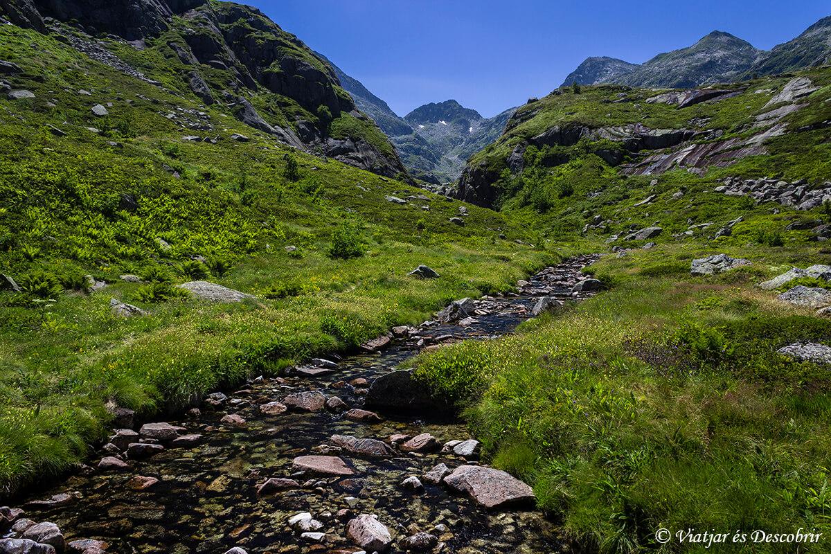 paisaje verde en el pirineo