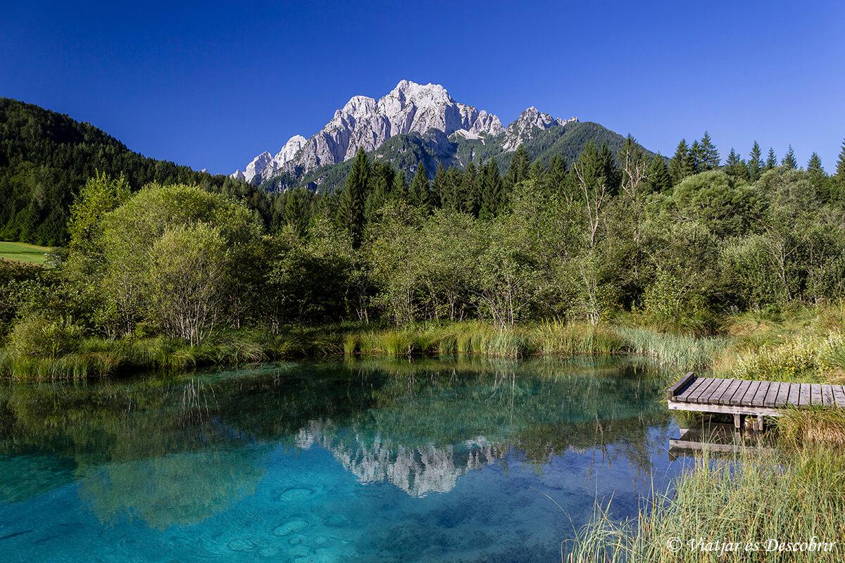 reserva zeleni en el norte de eslovenia