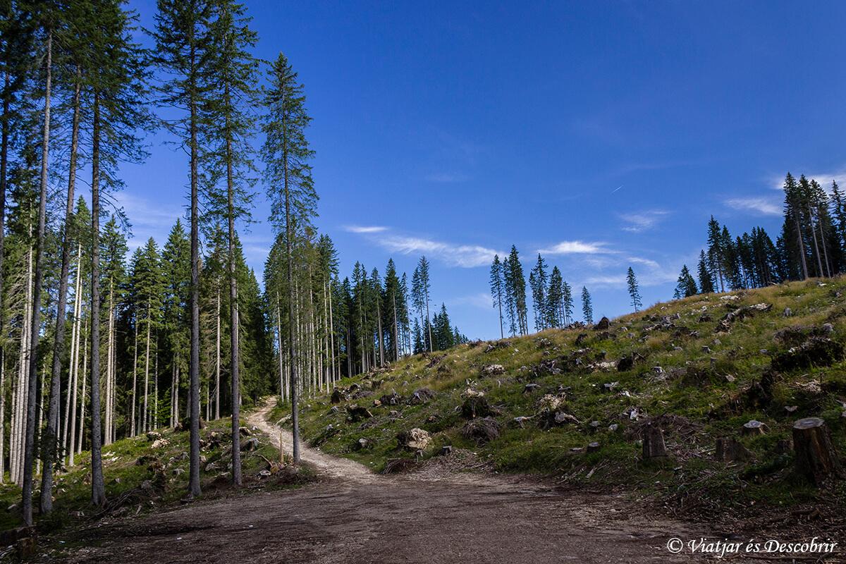 excursion en el parque nacional triglav