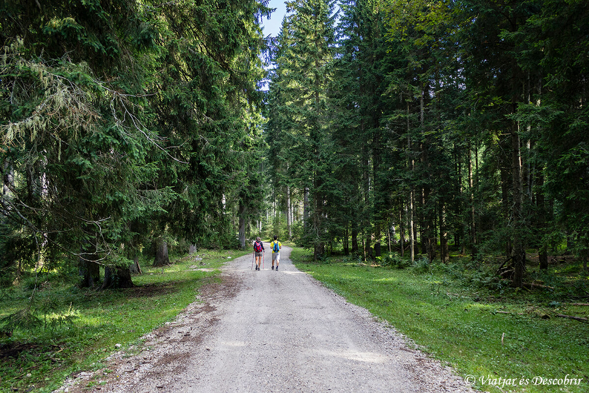 excursion al debela pec cerca del lago bled