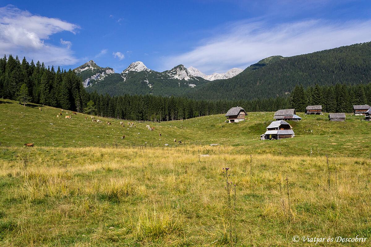 casas de pastores en el parque triglav cerca del lago bled