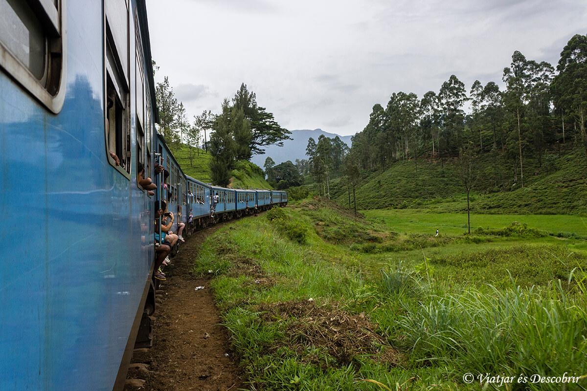 tren en sri lanka nuwara eliya