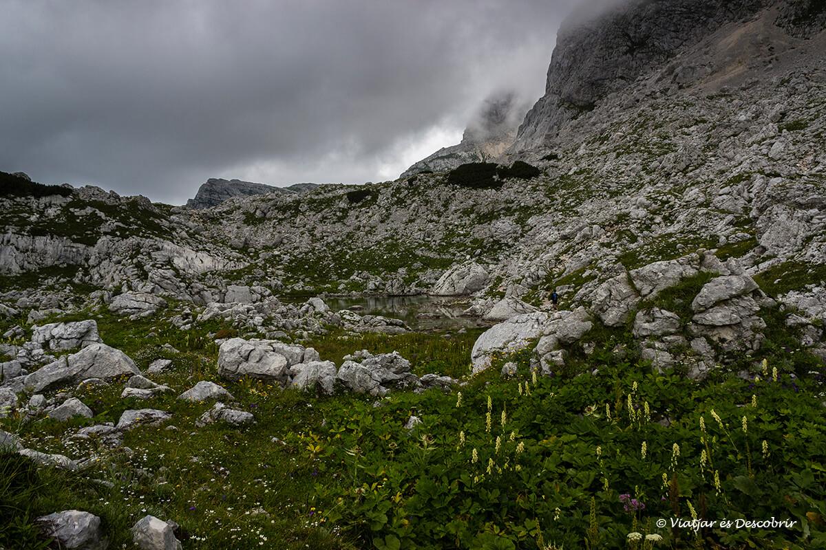 paisajes y niebla en una de les excursiones en eslovenia entre lagos