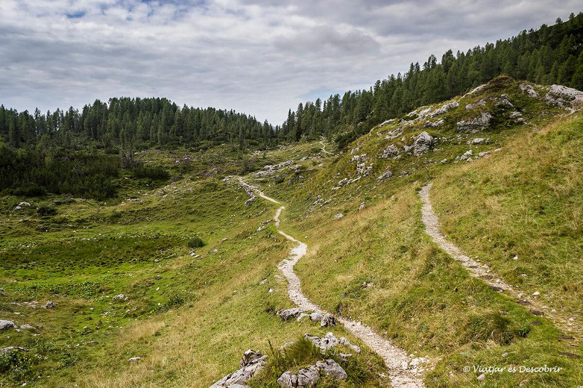 caminos de senderismo en el parque nacional triglav