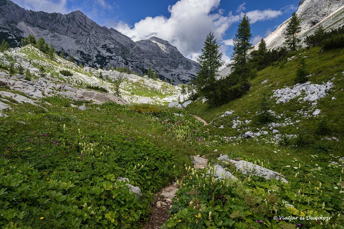 caminos en la excursion por el valle de los siete lagos en eslovenia