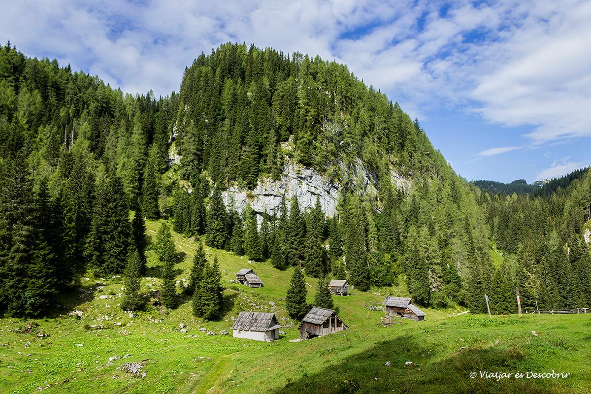 valle alpino durante las excursiones en eslovenia
