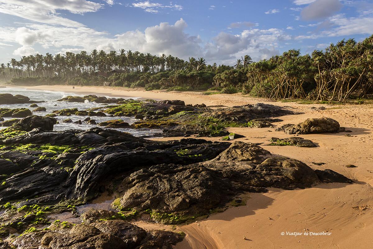 playa cerca de mirissa