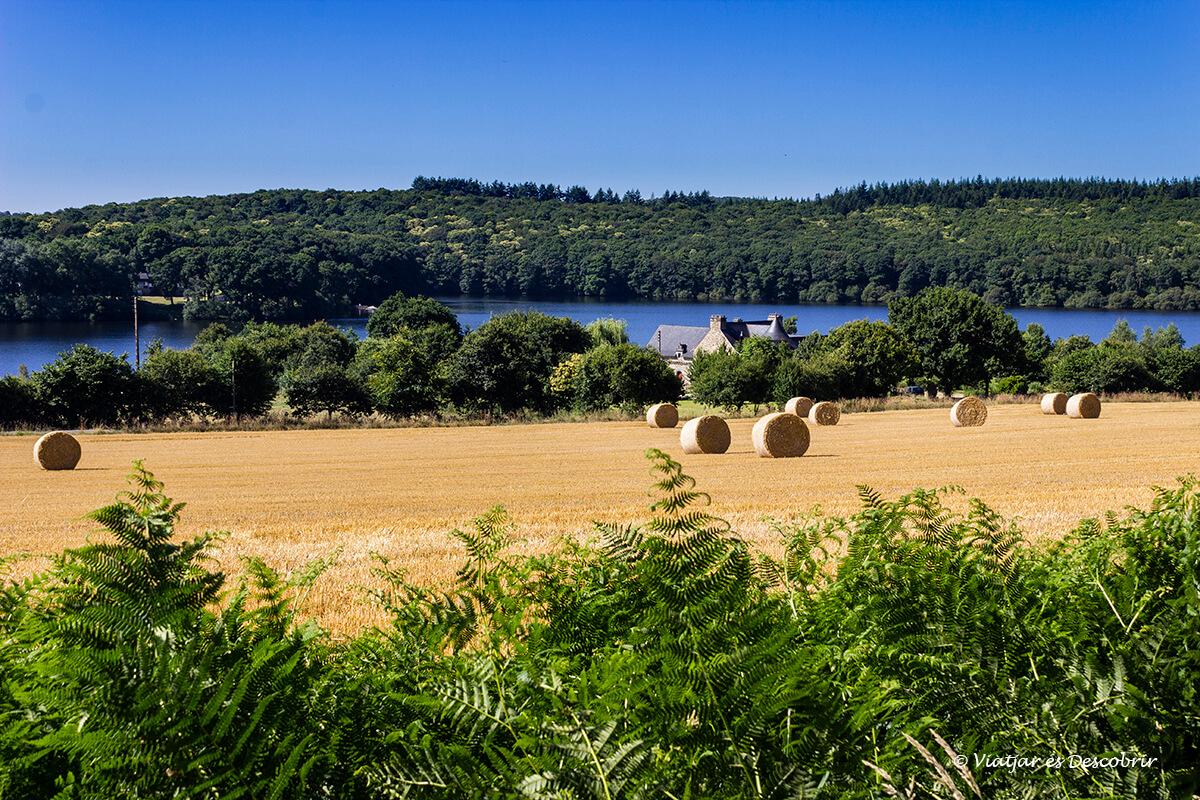 recorriendo el interior de la bretaña francesa en bicicleta entre campos de cultivo