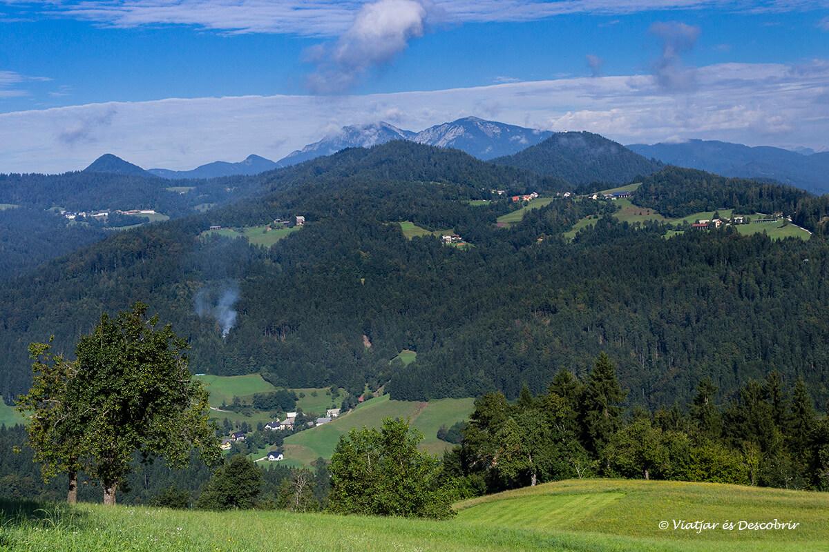 paisaje rural de camino a los prados alpinos velika planina