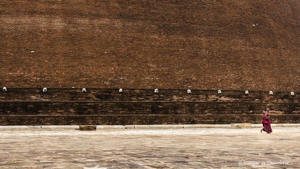 En anuradhapura hay muchos monjes rezando en las estupas