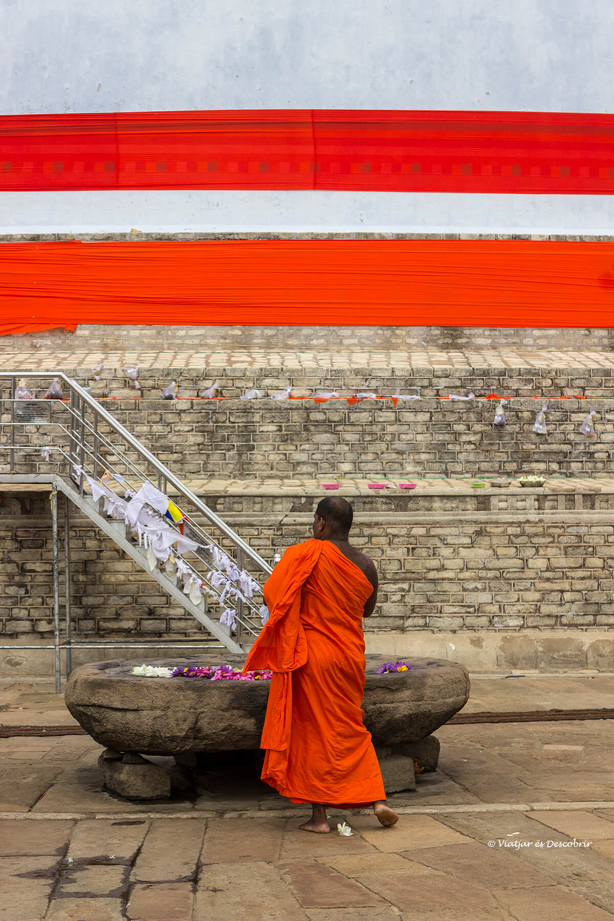 monje rezando en la sagrada anuradhapura