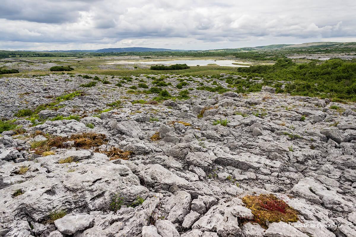 paisaje lunar de rocas en el the burren parque nacional