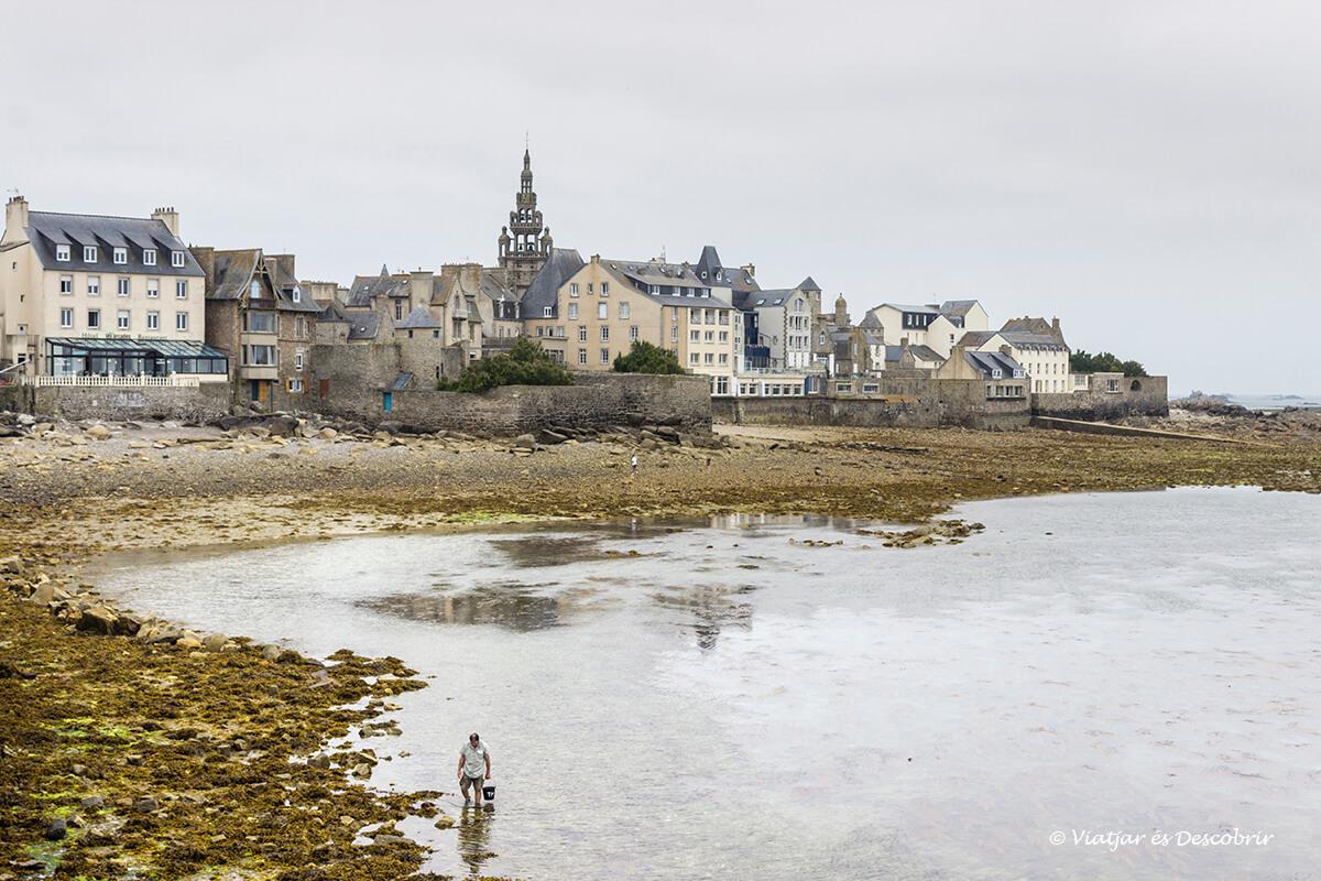 el puerto de roscoff con la marea baja durante el viaje en bicicleta por la costa bretona