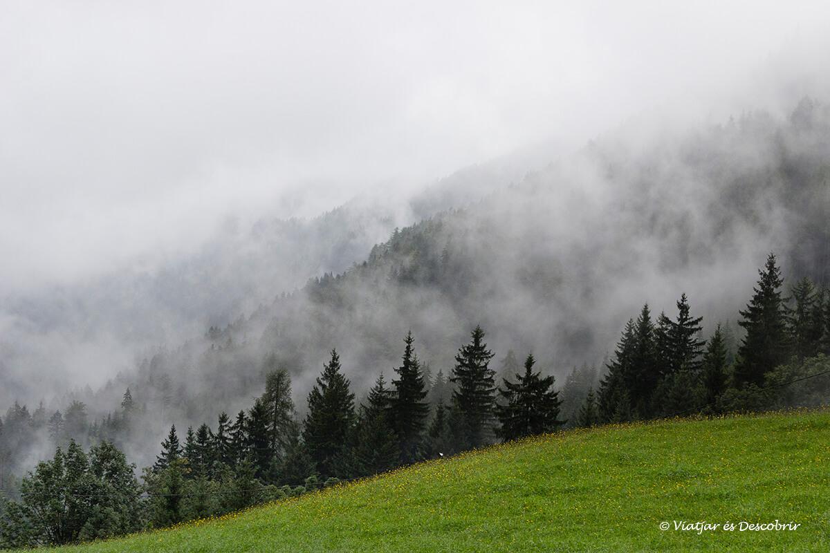 niebla y las montañas del norte de eslovenia en coche