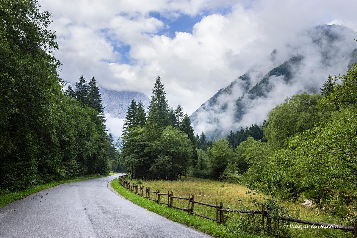 carretera atravesando en valle de logarska dolina en el norte de eslovenia