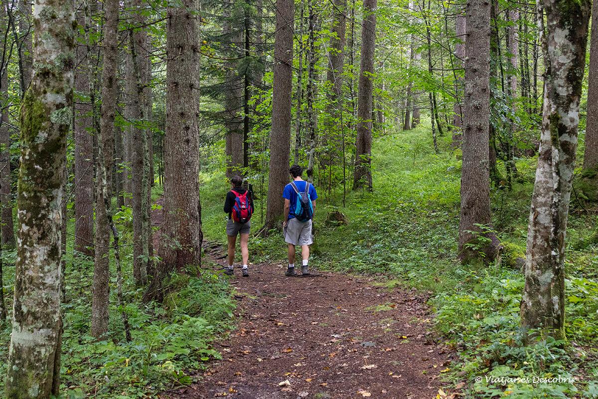 excursion por el valle de logarska dolina en eslovenia