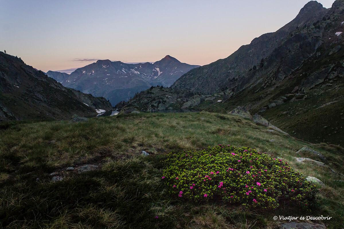 paisajes del alt pirineu en el amanecer de camino a la pica d'estats