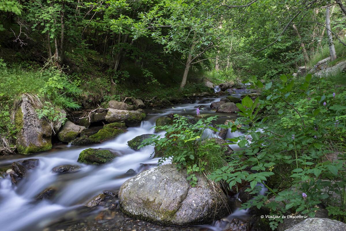 gorgas del rio segre en la cerdanya francesa