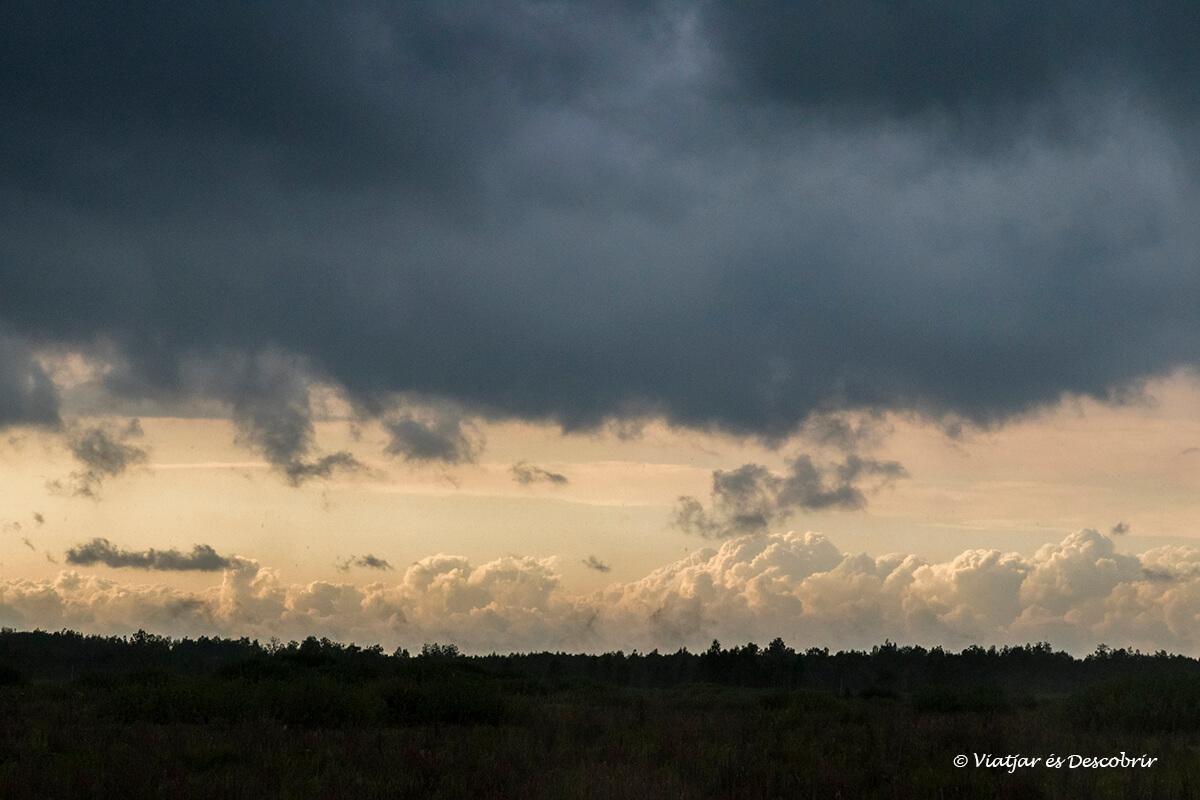 nubes de lluvia en Biebrza