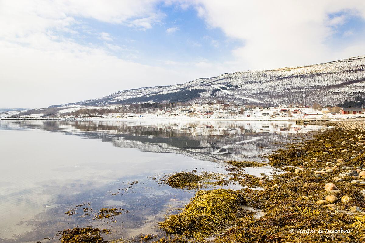 paisaje nevado de invierno por la laponia noruega en coche