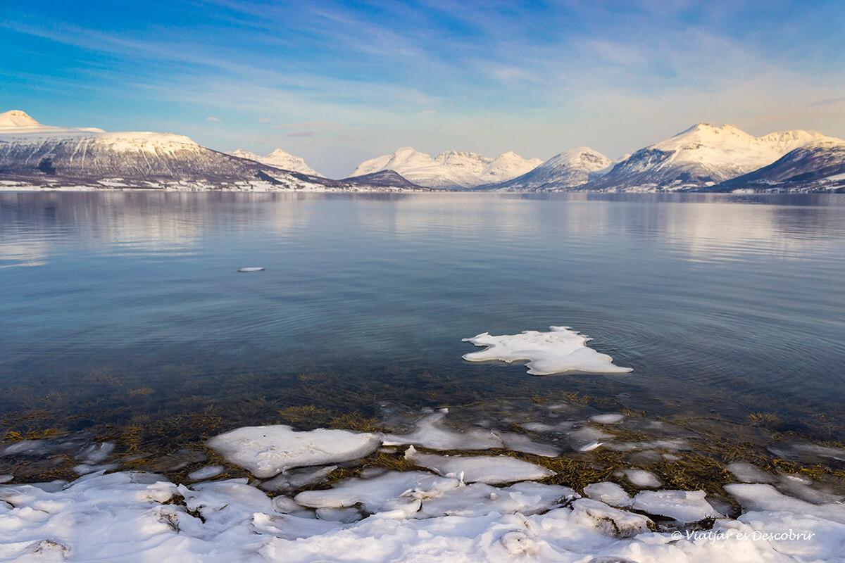 hielo en el fiordo en las afueras de tromso