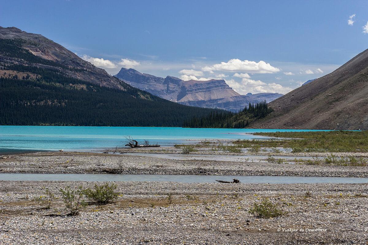 vista de un lago en la icefield parkway