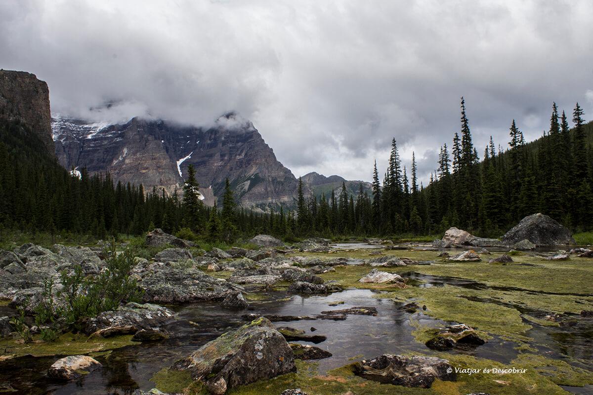 consolation lakes es una excursion que hacer en banff