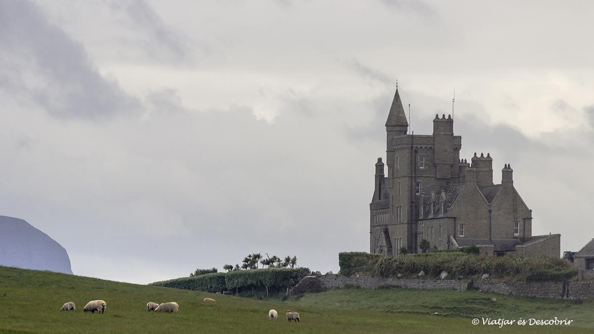 Castillo de Classiebawn rodeado de ovejas en irlanda