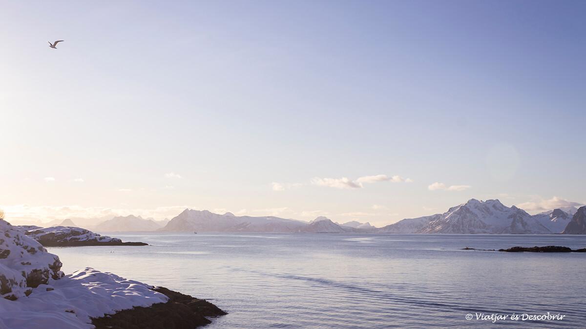 las mejores playas de las islas lofoten en invierno
