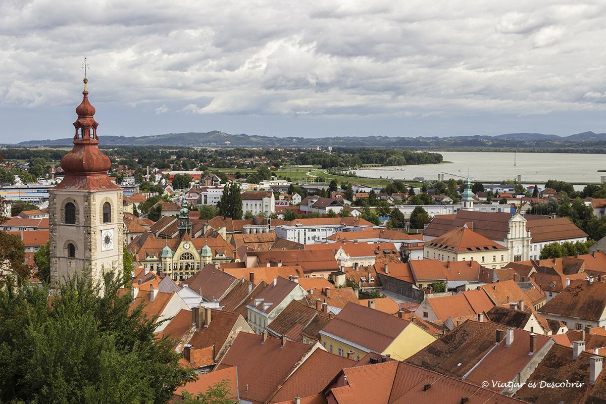 tejados rojos de la ciudad de Ptuj