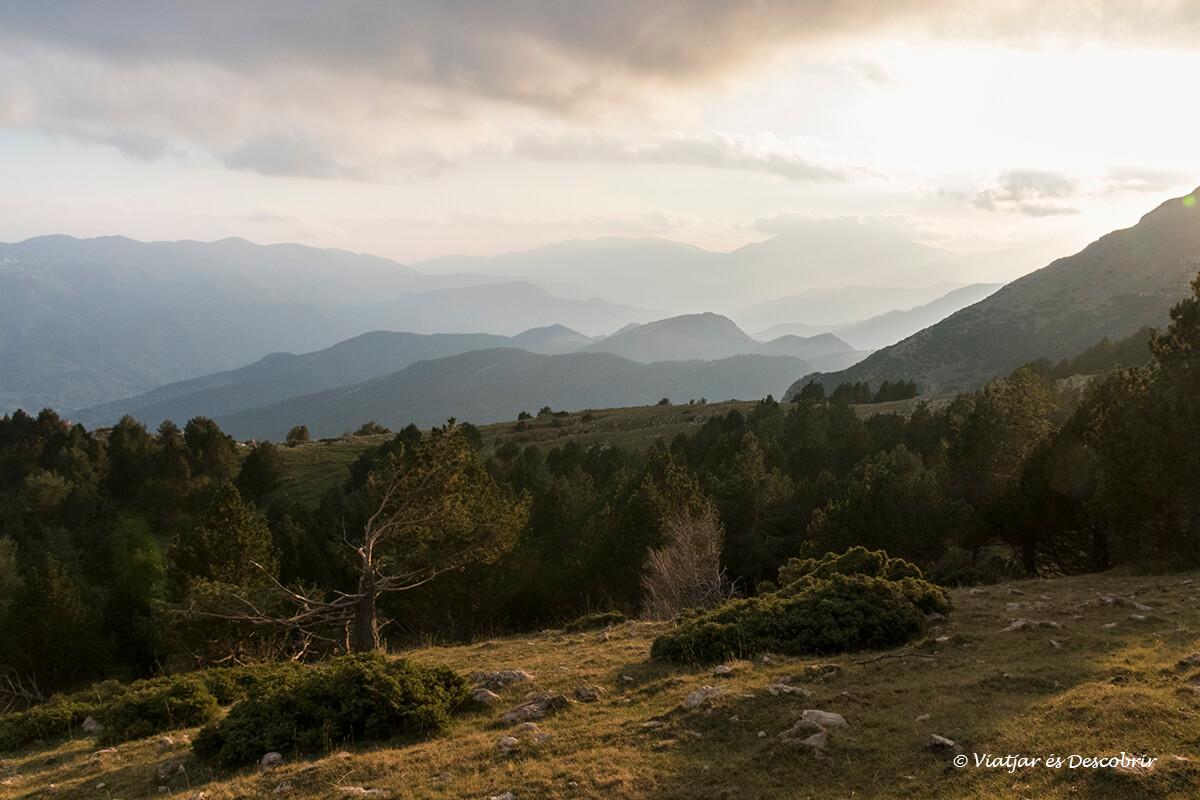 paisajes preciosos durante la berrea del ciervo en Cataluña