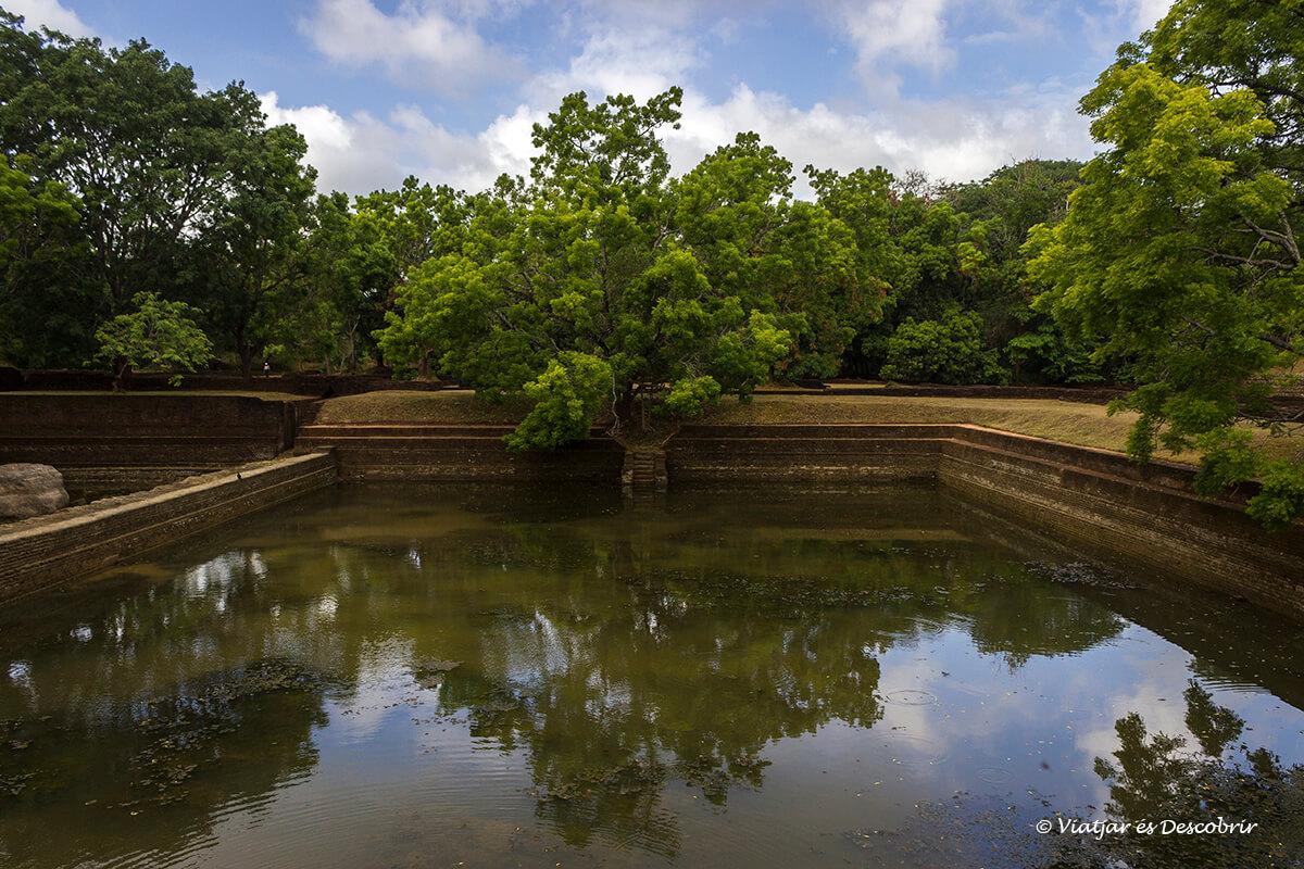 naturaleza y pozos de agua en los jardines de la roca de Sigiriya en sri lanka