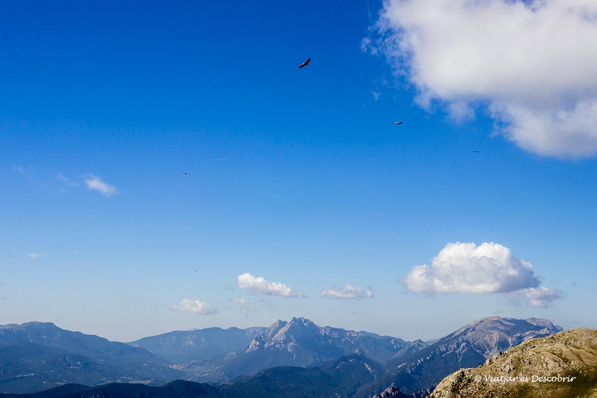 vista panoramica del pedraforca