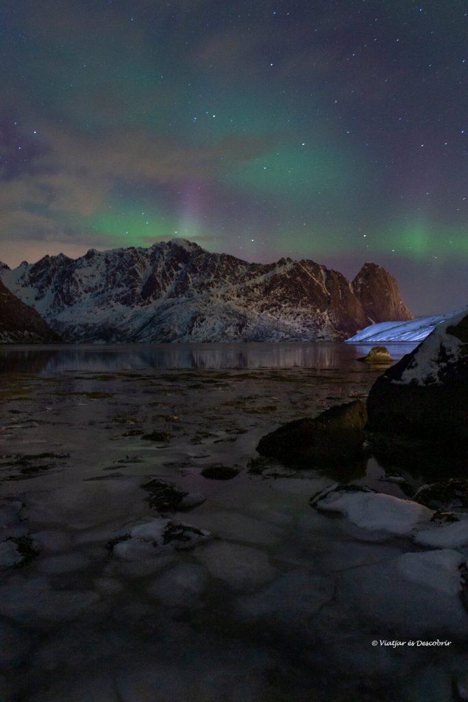pequeña aurora boreal por sobre el círculo polar ártico