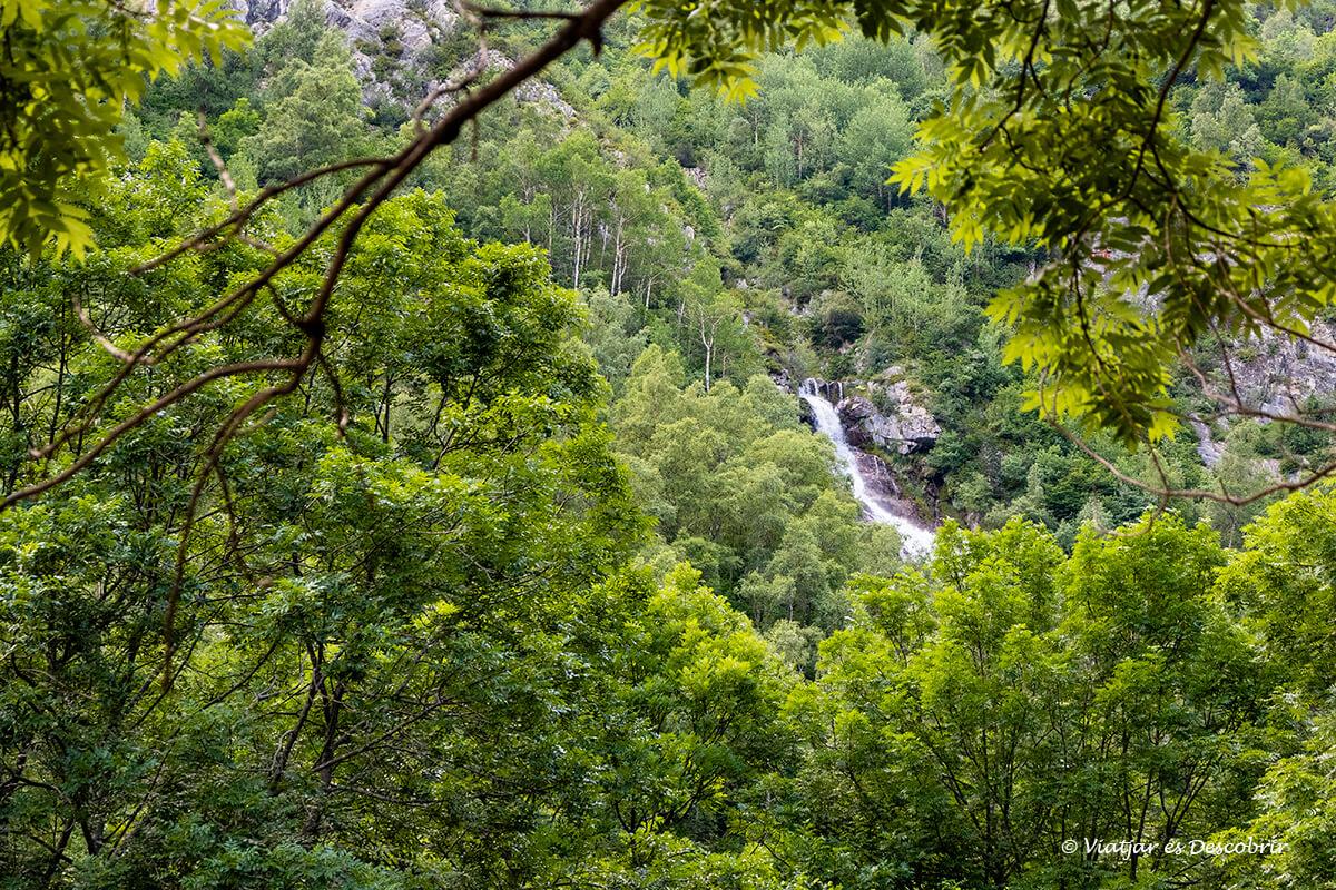cascada Espigantosa entre el bosque