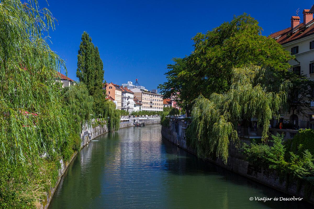 la ribera del río de ljubljana en la parte céntrica de la ciudad