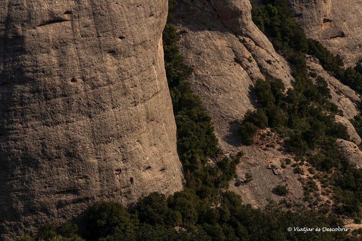 escaladores en una pared vertical de montserrat