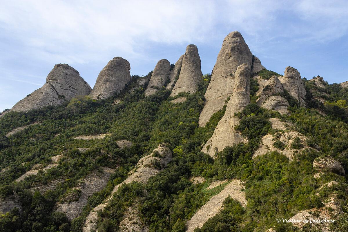 paisaje de rocas y arbustos típico de montserrat